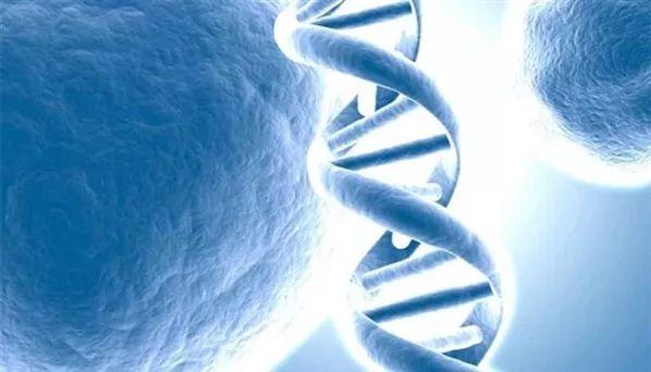 用基因编辑逆转癌细胞,中国科学家取得重大突破