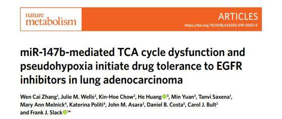 癌症治疗的重大突破_肺癌治疗新发现!microRNA可作为逆转和预防肺癌耐药性的潜在靶点 ...