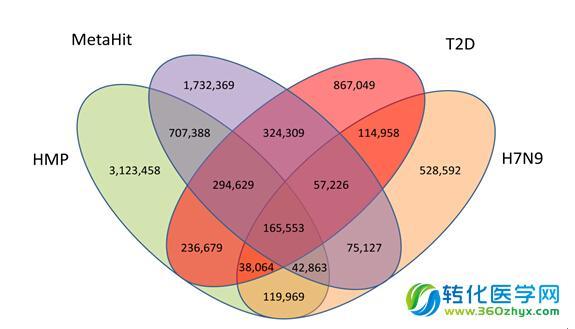 菌群的关系-组学-转化医学