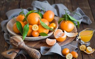 柑橘的品種有什么 柑橘類水果品種大全