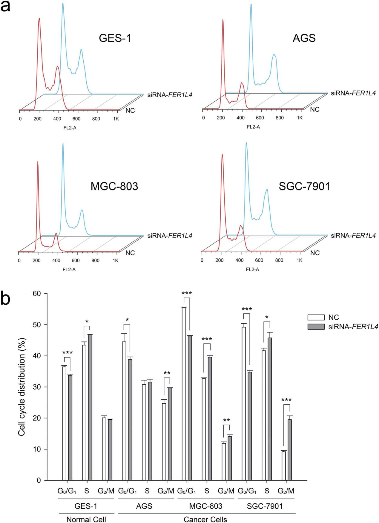ceRNA是一类通过竞争性结合microRNA来影响microRNA-RNA的转录后调控。作为一种全新的基因转录后调控机制,拓宽了我们对基因调控的进一步理解。当我们想进入这个最新的研究领域时,我们该怎么入手呢?来自宁波大学医学院的研究人员通过他们对胃癌中一个lncRNA-FER1L4的研究,为我们展示了ceRNA调控机制的研究策略。 研究背景: 长链非编码RNA(lncRNA)是一类长度大于200nt的非编码RNA,通过转录调控,转